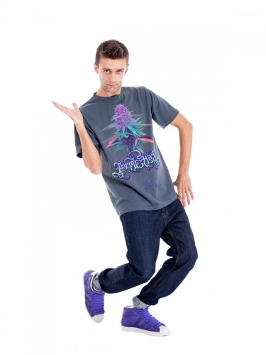 Purple Haze T-shirt (Grey)